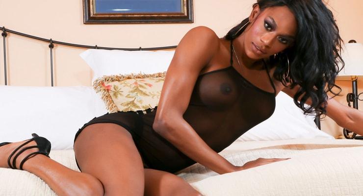 Ebony and black shemales